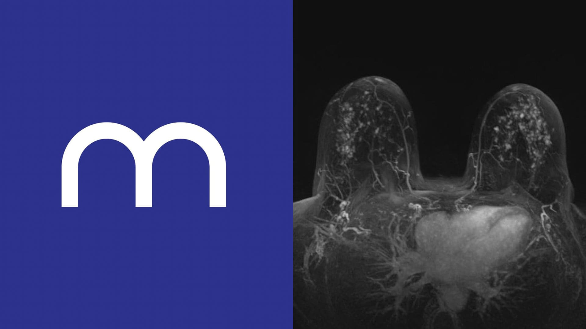 gra brand design mammo logicum 1